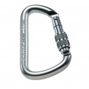Camp D Pro Lock