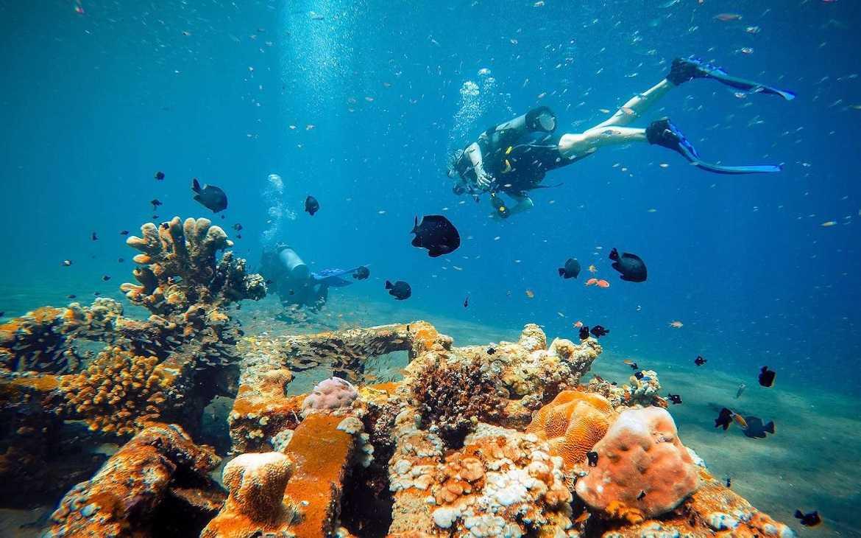Potápění Na Bali – Tulamben – Amed